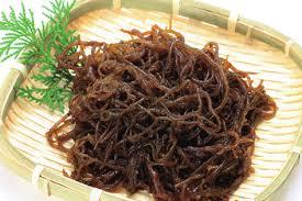 Tại sao nên chọn tảo Fucoidan Nhật Bản để chữa ung thư? - 1